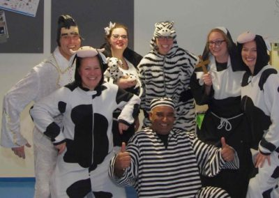 Bonte Koe Verhuur Maasland - Elvis Koe Boef Zebra Non