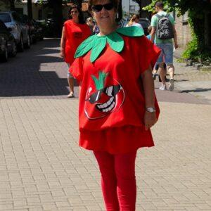 Bonte Koe Verhuur Maasland - Tomaat - Tomatenpal