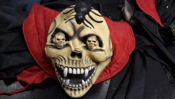 Bonte Koe Verhuur Maasland - Kindercape met masker