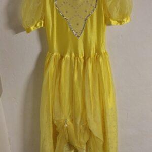 Bonte Koe Verhuur Maasland - Belle jurk Disney meisje